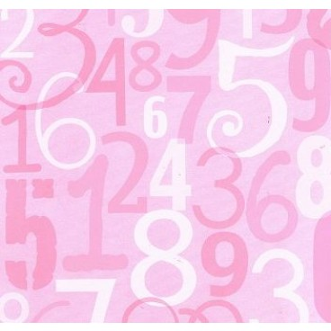Provo Craft Pink Numbers