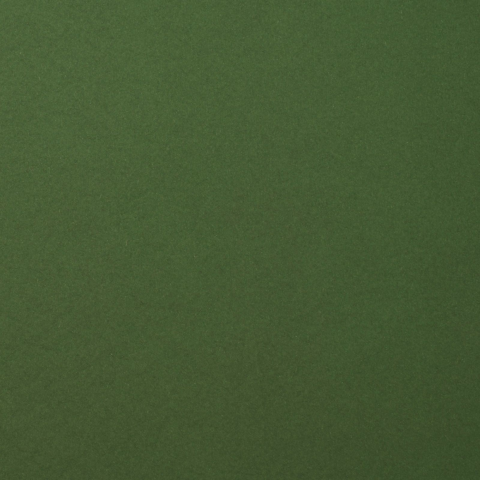 Florence Cardstock smooth Pine